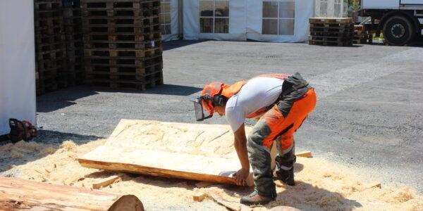 Holzschnitzelschneider
